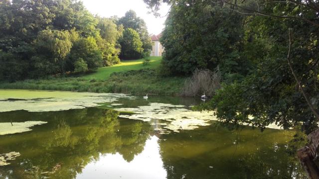 Schloss Hohenpriessnitz Hochzeit im Park